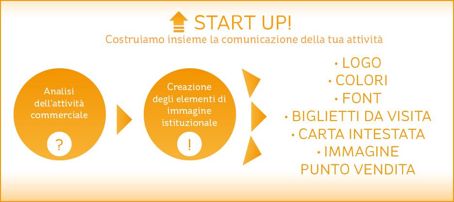 schema_startup