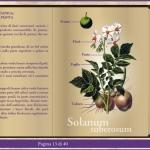 touch game san carlo libro4